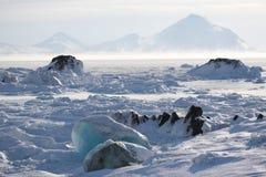 Clima ártico Imagens de Stock Royalty Free