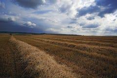 Clima tempestuoso sobre un campo de trigo enseguida después de la cosecha Foto de archivo libre de regalías