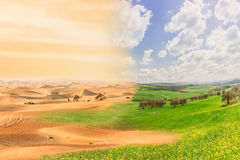 Climate change with desertification process. Double exposure with desert and cultivated fields Stock Photos