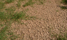 Climate change and drought Stock Image