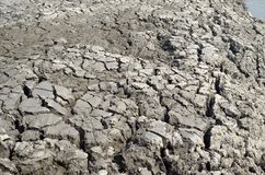 Climate change, the ground is dry, drought, cracked ground Royalty Free Stock Image