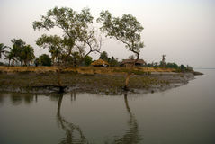 Climate Change in Sundarban, India Royalty Free Stock Photos