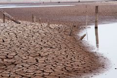 Climate change. Water in the lake are drying from impact of climate change royalty free stock image