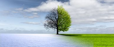Climate change from winter to springtime stock photography