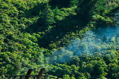 Climate gas pollution concept, smoke and forest Royalty Free Stock Images