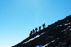 The climb Royalty Free Stock Image