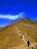 Climb mountain. A team climbing a high mountain Royalty Free Stock Images
