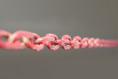 Climb with red chain. Rise to power with the strength of the chain / Grey Background / Center Focus Royalty Free Stock Photos