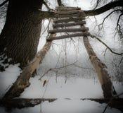 Climb to the light Stock Image