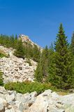 Climb to the top of Zyuratkul. Vertical frame. Climb to the top of Zyuratkul. Placers of large stones and coniferous trees growing through them. Vertical frame royalty free stock images