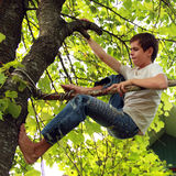 Climb a tree. Teen deftly climbs a tree Royalty Free Stock Photos