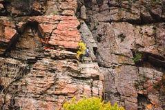 Climber on cliff Stock Photo