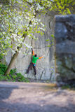 Climber climbs on the rock. Royalty Free Stock Photography