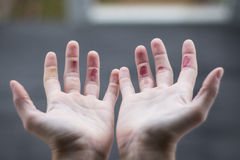 Climber& x27; fingeres de s Imagenes de archivo