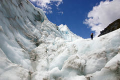 Climber Fox Glacier Royalty Free Stock Image