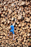 Climber going up the large pile of cut wooden logs Stock Image