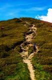 Climber. Mountaineer walking towards top of mountain Royalty Free Stock Photo