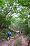 Climber on Phu Pkradueng trail Stock Photo