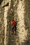 Climber on a rock wall, close up. Climber on a training rock wall near Trieste, Italy royalty free stock images