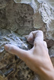Climber's hand Royalty Free Stock Image