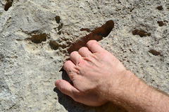 Climber`s hand holding on to rock. A climber`s right hand holding on to limestone rock in Spain Europe Stock Photos