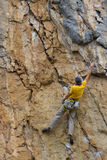 Climber. Stock Photography