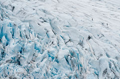 Climbers on glacier Stock Image