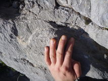 Climbers hand on a limestone cliff while climbing Royalty Free Stock Photography