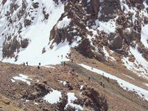 Climbers at the mountains. Group of climbers sportsmen hiking to the mountain peak Stock Image