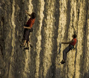 Climbers on a rock wall. Climbers on a training rock wall near Trieste, Italy royalty free stock images