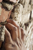 Climbing Brick Royalty Free Stock Photo