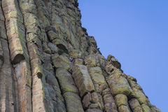 Climbing devils tower Royalty Free Stock Photos