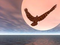 Climbing Eagle. Eagle Climbing into the sky Stock Photo