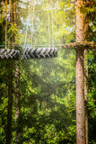 Climbing forest or rope park with tyre hanging on the ropes on nature. Background stock photo