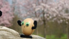 Climbing funny eggs stock footage