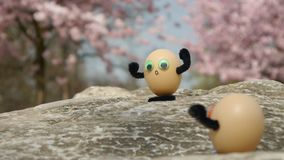 Climbing funny eggs stock video footage