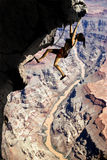 Climbing in the Grand Canyon Royalty Free Stock Photo