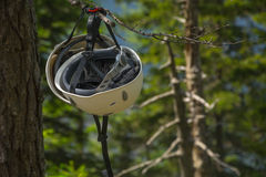 Climbing helmet hanging on a tree Royalty Free Stock Images