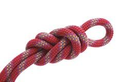 Climbing knot, figure eight. Alpine rope, climbing knot, figure eight Royalty Free Stock Photo