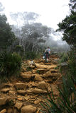 Climbing Mount Kinabalu, Borneo, Malaysia Royalty Free Stock Image
