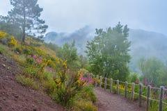 Climbing mount Vesuvius Royalty Free Stock Photo