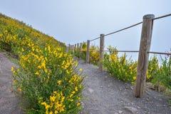 Climbing mount Vesuvius Stock Photo