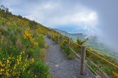 Climbing mount Vesuvius Stock Photos