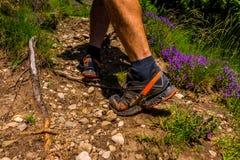 Climbing the mountain. Legs of a climber climbing mountain Royalty Free Stock Image