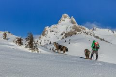 Climbing on mountain in winter Royalty Free Stock Images
