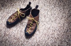 Climbing and mountaineering equipment on a carpet. Shoes, carbine, rope, lope, ascend-er. Concept of outdoor and extreme sport. Stock Images