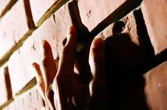 Hand on Brick Wall. Climbing the red clay brick wall Royalty Free Stock Photography