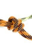 Climbing rope Royalty Free Stock Image