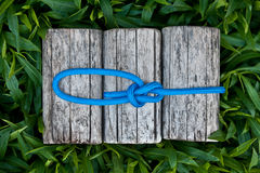 Climbing rope with a bowline knot. Climbing rope with a bowline knot on a natural background stock photo