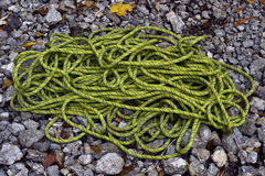 Climbing Rope on stones Stock Images